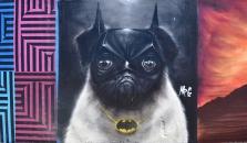 Bat-Pug.