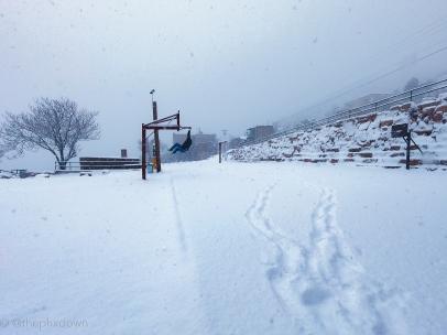 Snow dunker